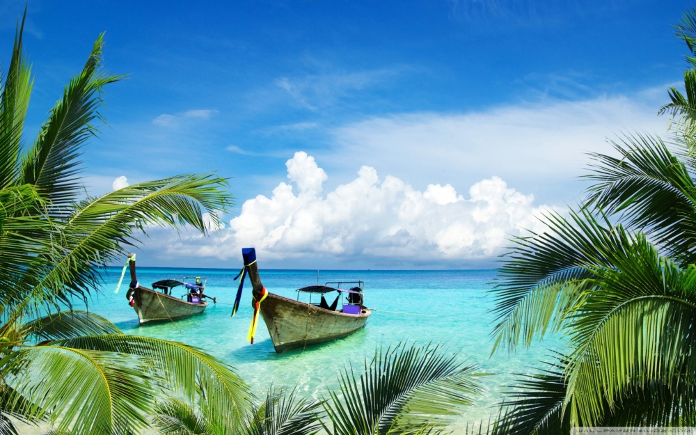 long_tail_boats_tropical_beach_palm_trees_leaves-wallpaper-1680x1050.jpg